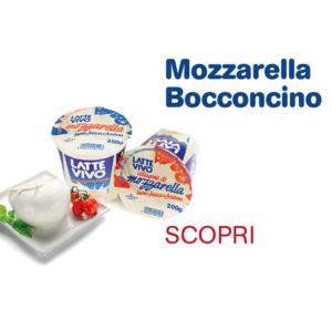 mozzarella bocconcino lattevivo