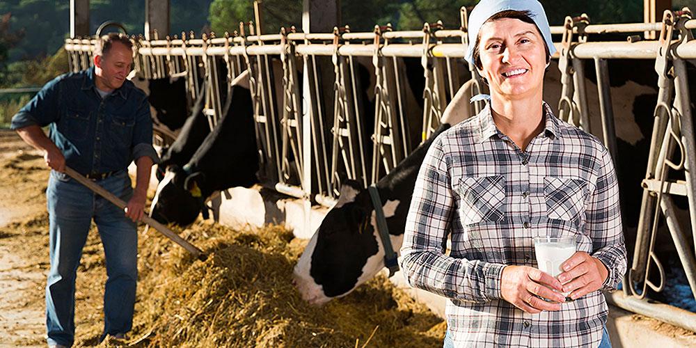 contadina lattevivo
